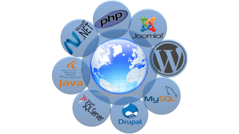 Software Development Company Gwalior